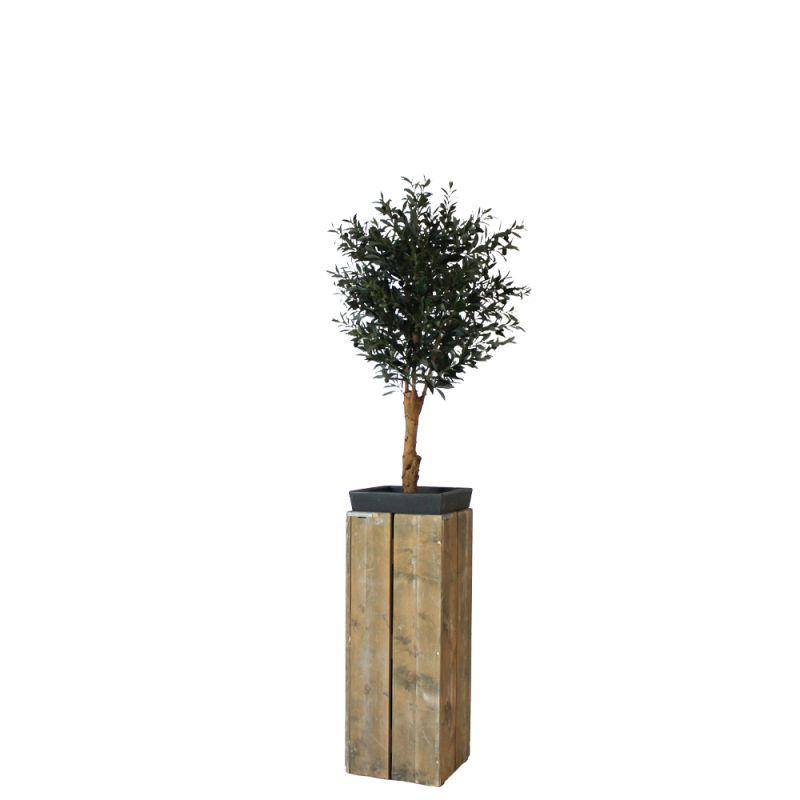 Kunst olijfboom in sokkel steigerhout hoog