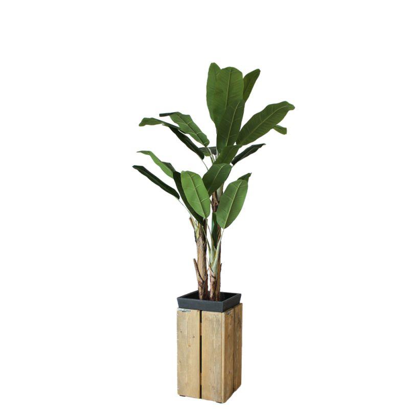 Kunst bananenboom in sokkel steigerhout laag