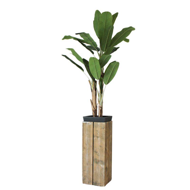 Kunst bananenboom in sokkel steigerhout hoog