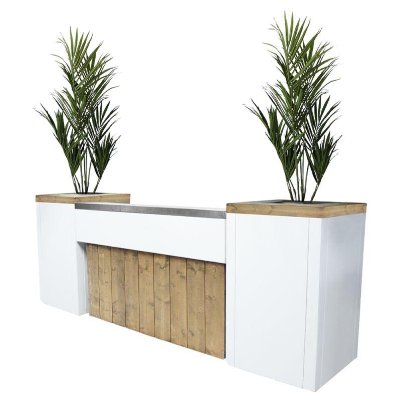 Bar Ibiza XL met kunst Kentiaplanten